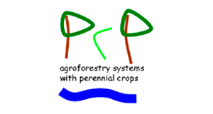 Mesoamerican Scientific  Platform for Agroforestry (PCP) - Costa Rica