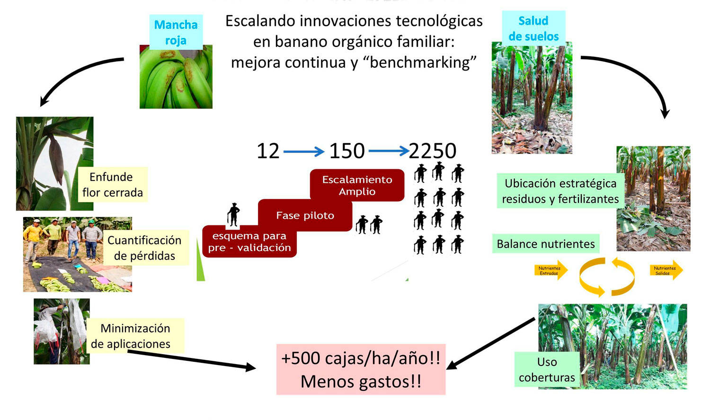 Facilitando el escalamiento de tecnologías ecológicas entre productores familiares con herramientas digitales