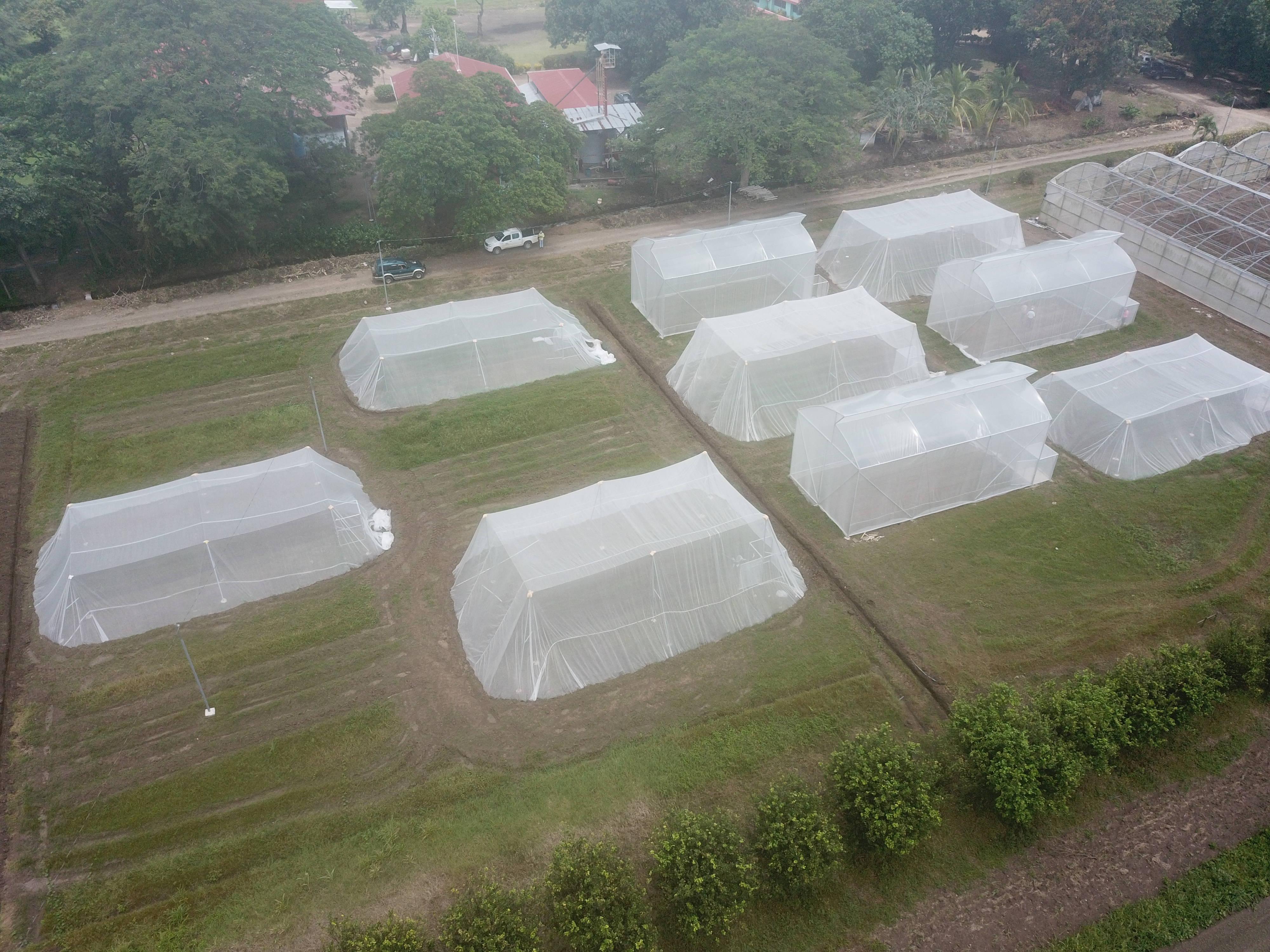 Imagen aérea de estructuras de ambiente protegido ubicadas en la Estación Experimental Enrique Jiménez Núñez INTA Costa Rica