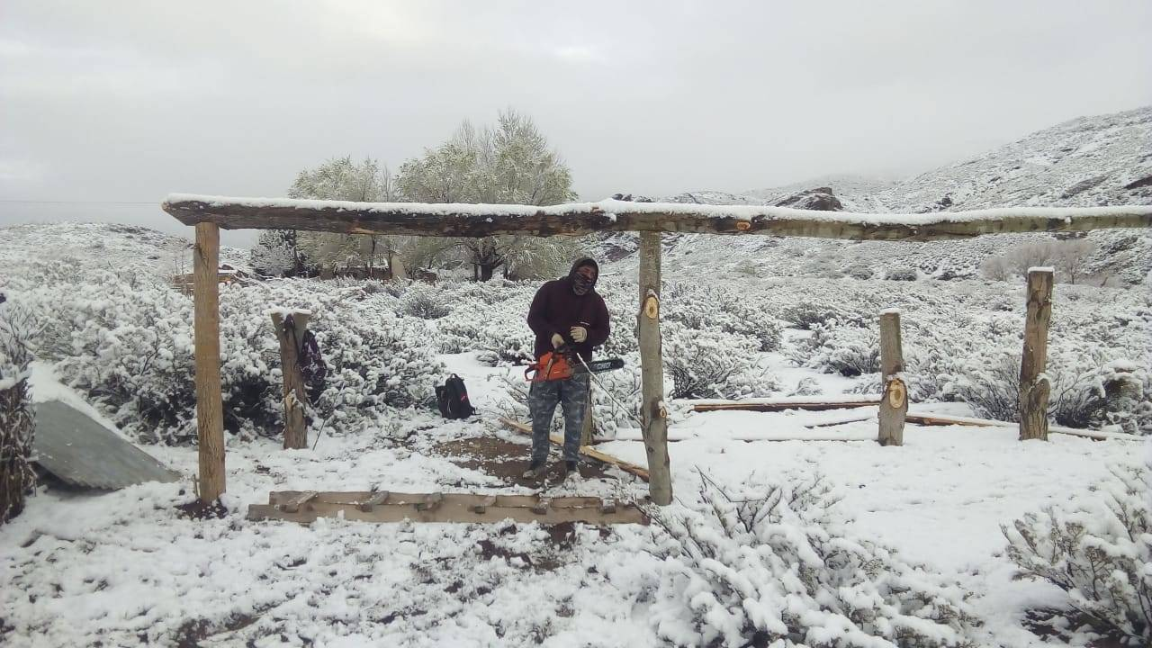 Construcción de cobertizo para manejo animal, Protagonia Norte Argentina