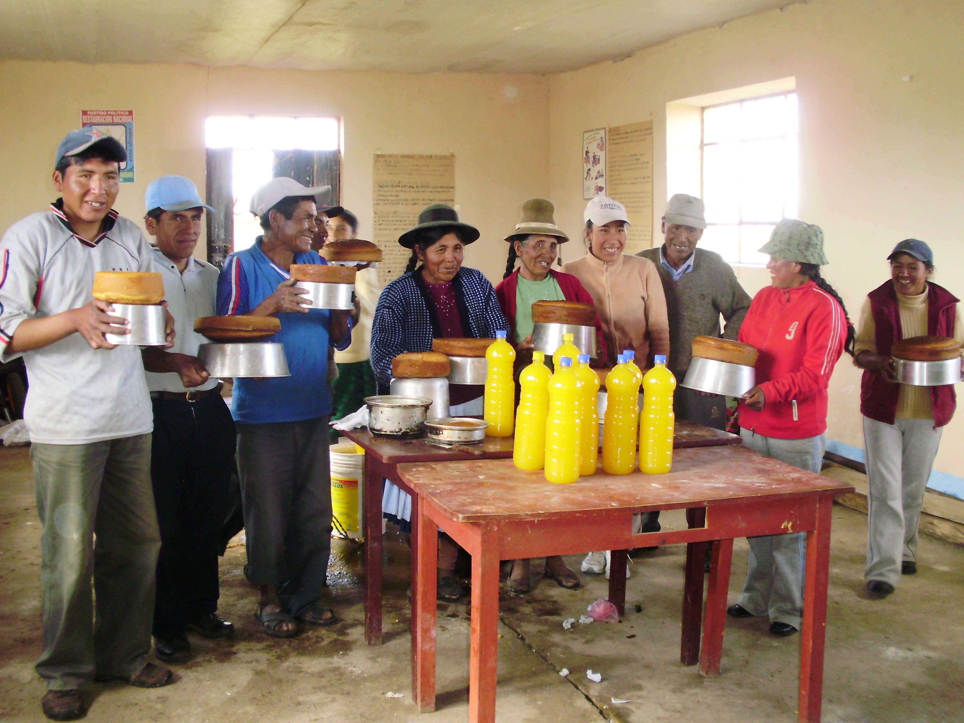 Alternativa Tecnológica Transformación del grano de quinua en néctar de quinua Puno Perú CIRNMA FONTAGRO