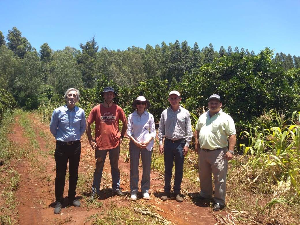Field visit to the demonstration lot in Paraguay