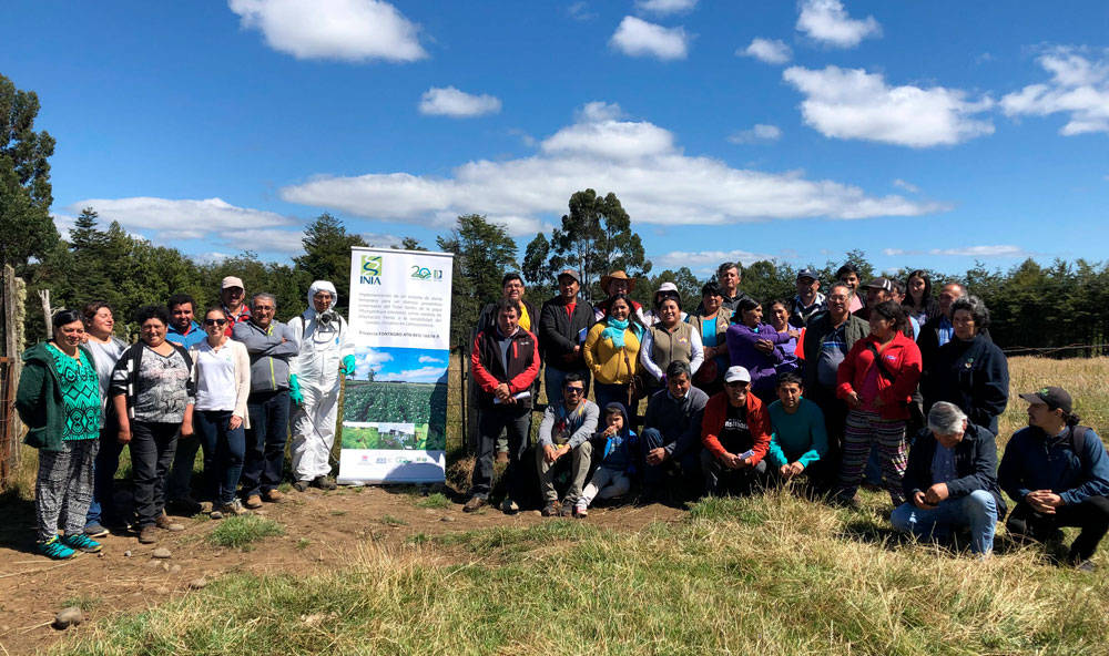 Training in good agriculture practices in Chiloé