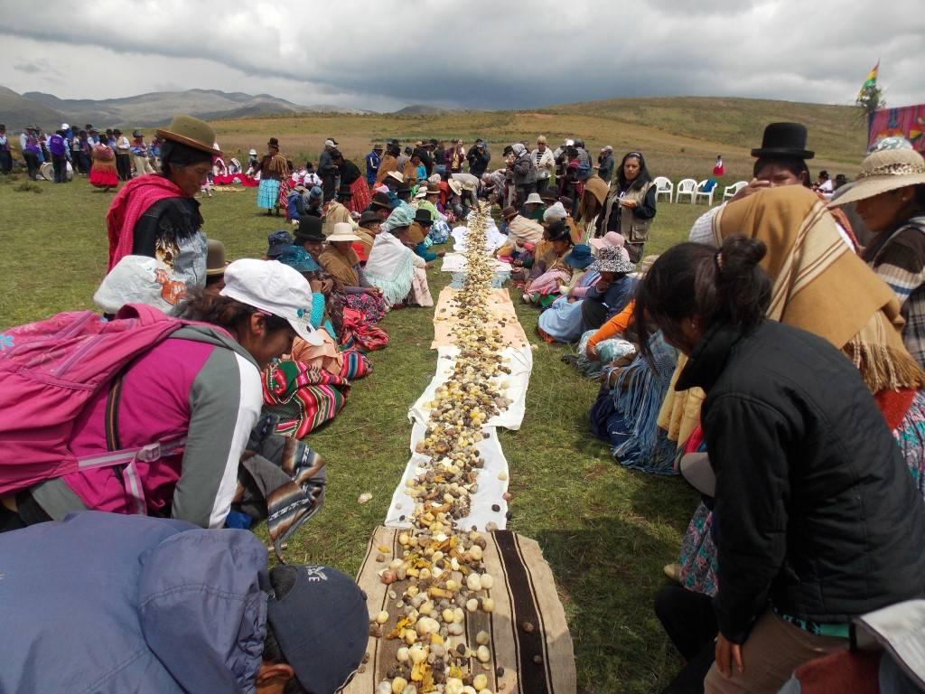 """""""Apthapi"""", costumbre ancestral que consiste en degustar entre todos los miembros de la comunidad una merienda con productos cultivados en la región, como papa, oca, quinua, izaño y otros."""