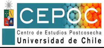 CEPOC - Uchile - Chile