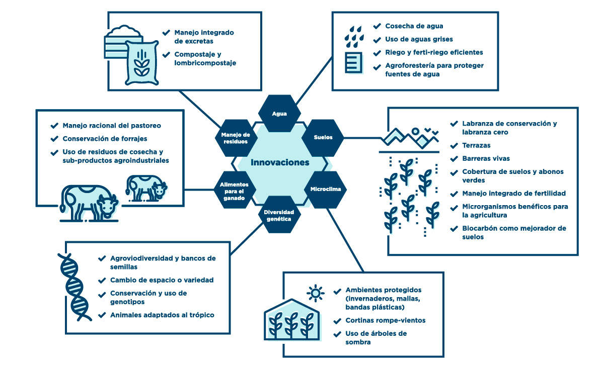 Innovaciones para la adaptación al cambio climático